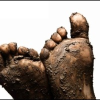 Tracking in Mud: A Reflection on the Book of Job